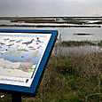 Leigh_nature_reserve_you_are_here